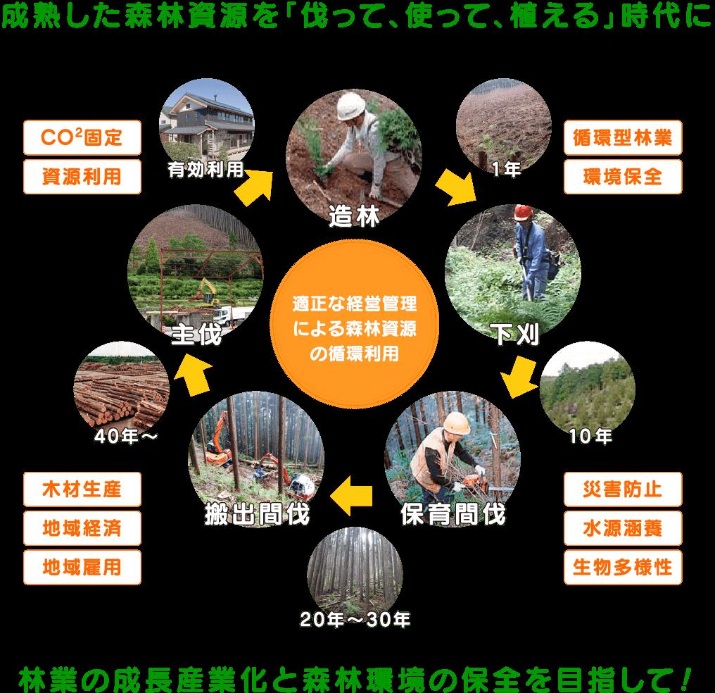 林業の成長産業化と森林環境の保全を目指して